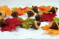 CHO-TG-acorn-candy