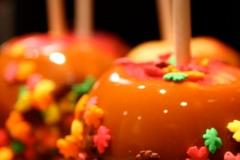 MIS-31-Fall-carmel-apples