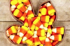MIS-31-candy-corn in leafe-mold